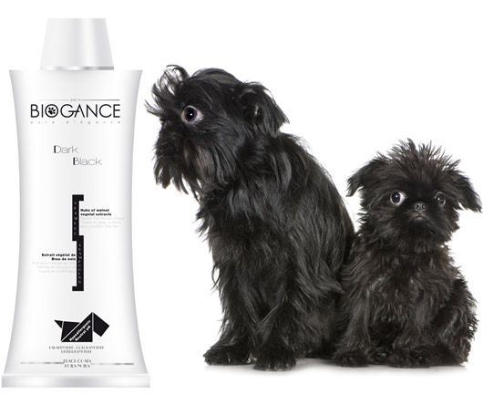 Biogance Dark Black Shampoo (250 ml)